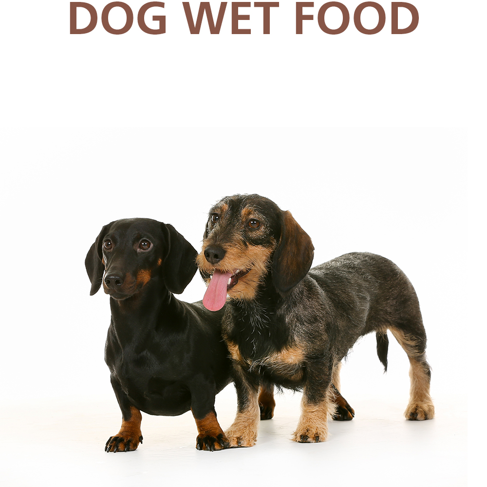DOG WET FOOD